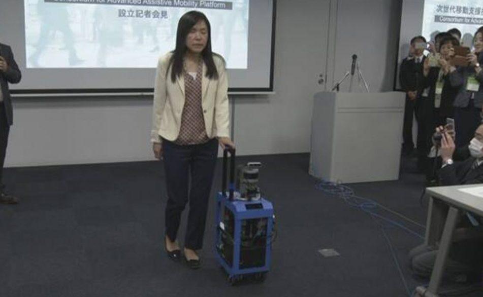 Чемодан поводырь в Японии