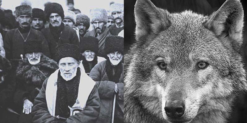 Во многих чеченских сказаниях четко прослеживается связь волка и предков нахов