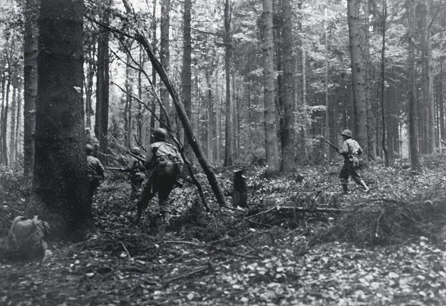 В лесу на войне