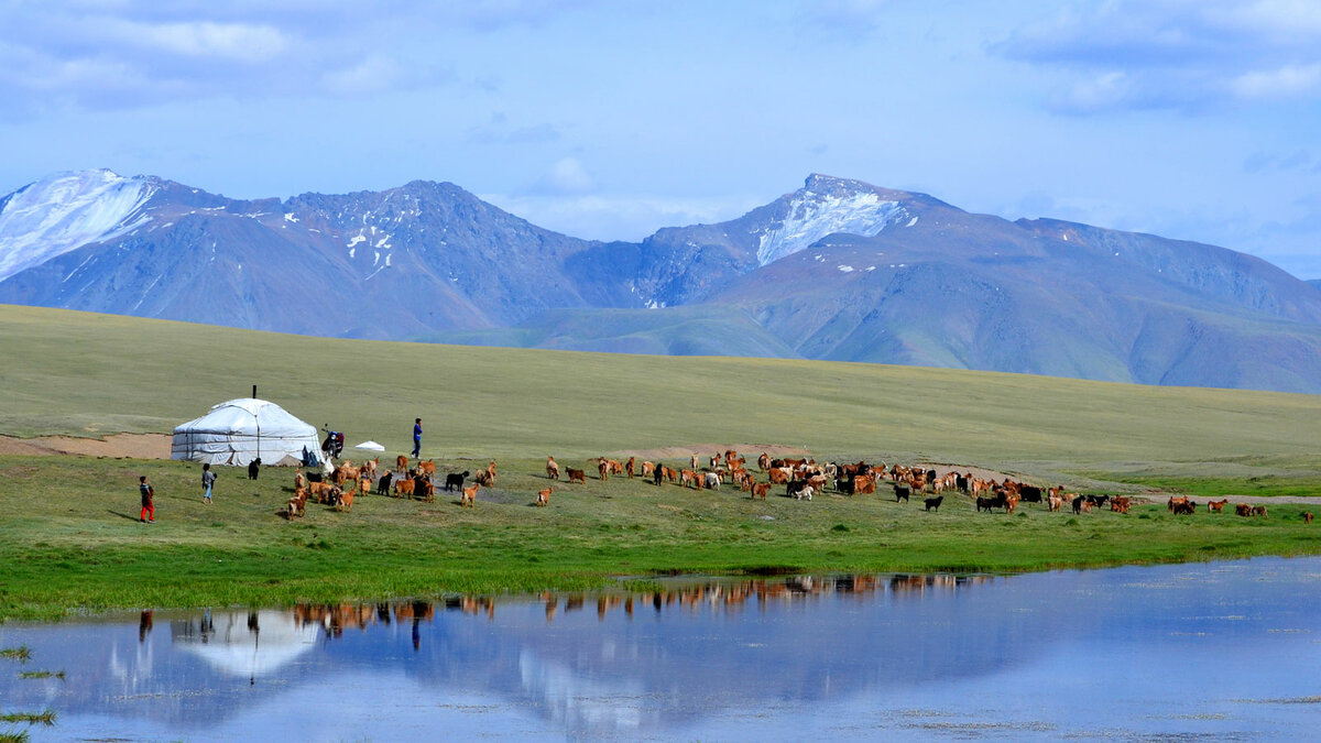 Монгольская республика