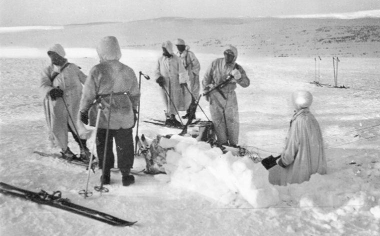 Экспедиции на север